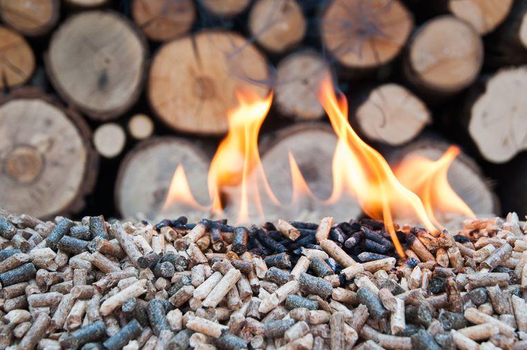 Biomassa is volgens de EU koolstofneutraal. Beeld Thinkstock