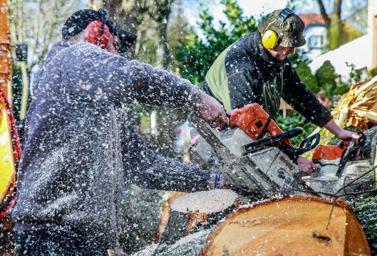 Gemeentewerkers in Brussel ruimen puin na de storm. Beeld EPA