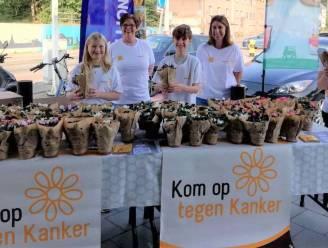 Schelse vrijwilligers verkopen meer dan 500 plantjes voor Kom op tegen Kanker