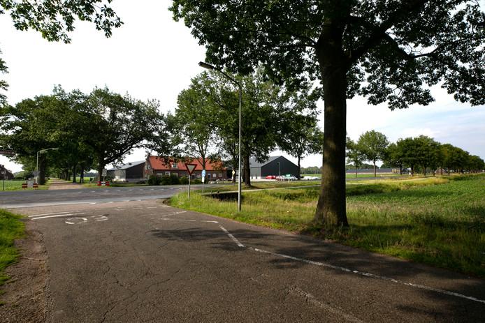 perceel groenondernemer Panhuijzen aan de Langstraat 79 in Deurne