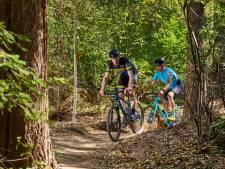 Achterhoek als het mountainbike-mekka van Nederland: 'Straks een netwerk van ruim 300 kilometer aan routes'