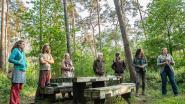 """Inwoners ongerust over grootschalige kap: """"11.000 bomen in Vagevuurbossen verdwijnen"""""""