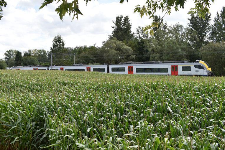 De trein kwam tot stilstand tussen Nuchten en de Middenstraat.