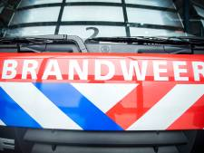 Negen brandweerlieden Schoonhoven onderscheiden