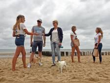 Schone meiden op de West-Zeeuws-Vlaamse stranden: gooi je afval weg