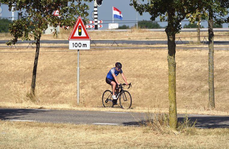 Droog gras in Echteld. Beeld Marcel van den Bergh / de Volkskrant