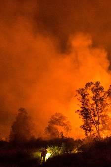 Grote brand in Deurnsche Peel onder controle