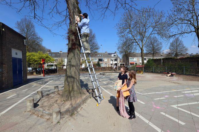 Hakee Mau hangt een vogelhuisje op  in een boom op het schoolplein van de Wethouder Van Eupenschool. Tim en Eva van Rijswick kijken toe en wachten tot hun eigen huisjes worden opgehangen.