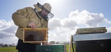 Imker Abdelkader werd ooit 124 keer gestoken door bijen: 'Mijn voeten waren zo dik, ik kon geen schoen aan'