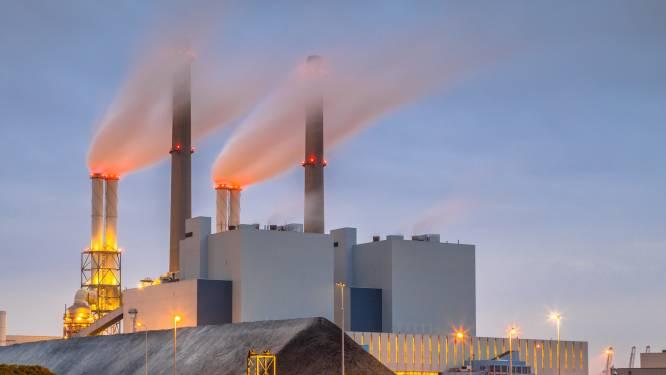 Gemist? Kolen maken comeback en Tweede Kamer keert zich tegen coronatoegangsbewijs voor terras