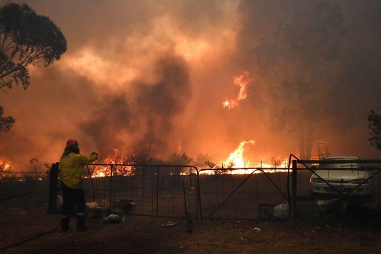 Branden in de buurt van de stad Tahmoor. Beeld REUTERS