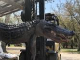 Verdwijning hond na 24 jaar opgelost, dode alligator heeft opvallende maaginhoud