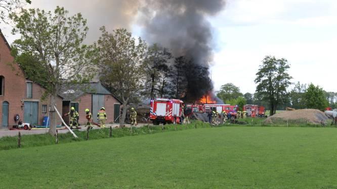 Brandweer onderzoekt stalbrand Harskamp, kortsluiting was mogelijk de oorzaak