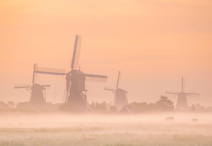 Een mistige zonsopgang bij de molens van Kinderdijk.