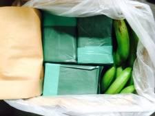 Drugsuithalers pakken verkeerde bananendozen mee: 400 kilo cocaïne blijft achter in havenloods