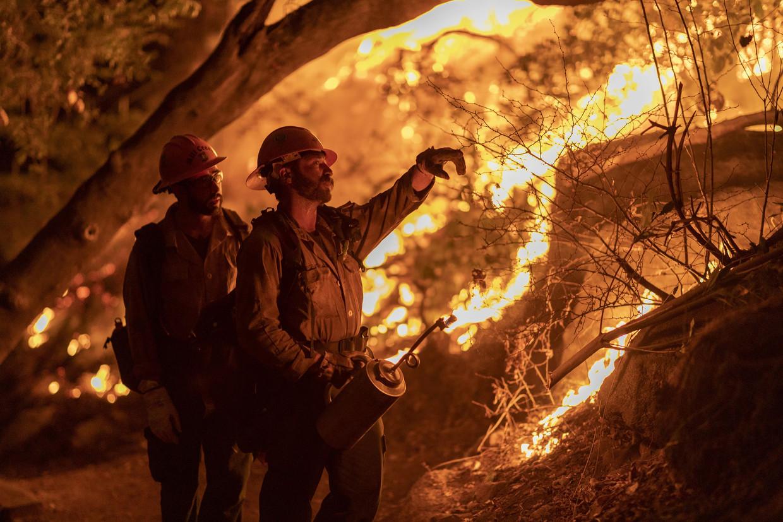 Brandweermannen gaan het vuur te lijf in Arcadia, Californië. Beeld AFP