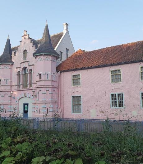 Toch géén vleermuizen in Roze Kasteel, renovatie kan starten