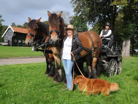 Gezelligheidsmens Anita heeft liefde voor dieren