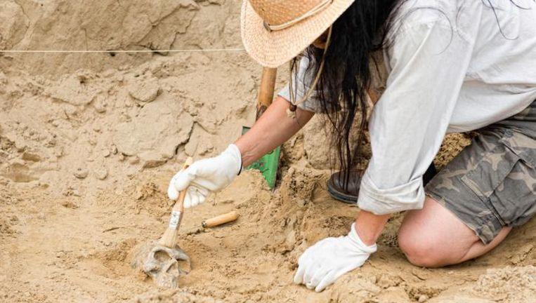 Archiefbeeld: archeoloog aan het werk