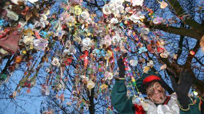 42 Gentse kleuters hangen samen met de Sint hun tuutje in de Tuutjesboom