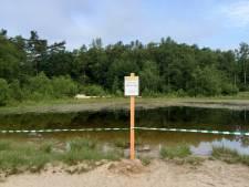 Blauwalgen in Nunspeetse vijver: 'Vermijd contact met water'