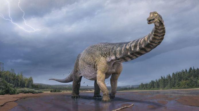 Een impressie van de Australotitan, één van de grootste dinosaurussen die ooit werden gevonden in Australië.