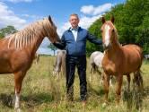 Paardenhouder Harold Zoet werd benaderd door drugscriminelen: 'Boden mij viervoud van de originele huur om hennep te gaan drogen'