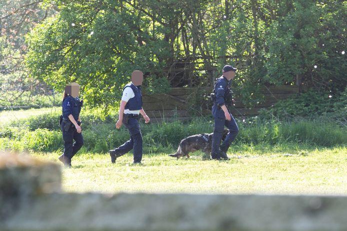 De verdachte kon dankzij een speurhond tussen het struikgewas worden aangetroffen.