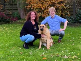 Wingene krijgt hondenloopweide in 2022
