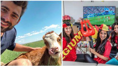 SHOWBITS. BV's genieten na van het WK, Sieg knuffelt met een koe