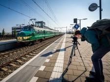 60 jaar oude Hondenkop langs station Elst, treingek Hidde staat klaar