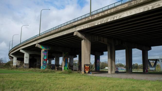 Burgerbewegingen halen slag thuis: bypass tijdens Oosterweelwerken telt slechts 2x3 rijstroken
