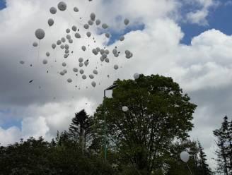 """Ballon oplaten in Nieuwpoort? Tot 250 euro boete: """"Te slecht voor het milieu"""""""
