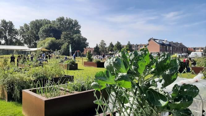 Nieuwe speel- en moestuin op de Staart geopend na sanering bodemvervuiling