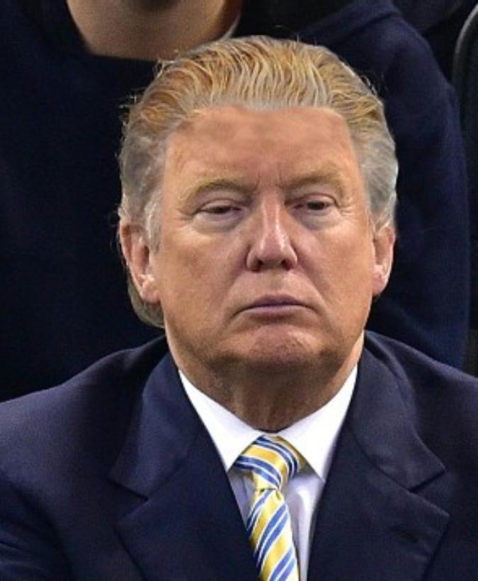 Un aperçu du Donald Trump président des Etats-Unis.