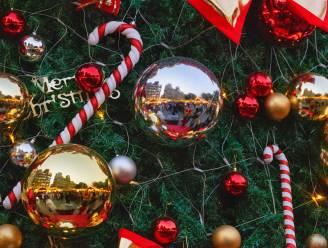 Gratis kerstboomophaling in Asse