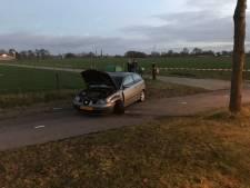 Automobiliste botst tegen boom in buitengebied bij Wekerom
