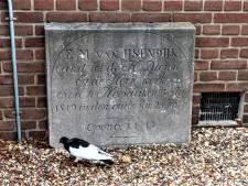 Het verhaal achter deze verlaten grafsteen in Hoevelaken: dominee Bert vluchtte (tevergeefs) voor cholera