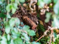 Op scherp staande granaat onklaar gemaakt aan Korteweg in Kampen: 'Ja, een oudje – maar daarom niet minder gevaarlijk'