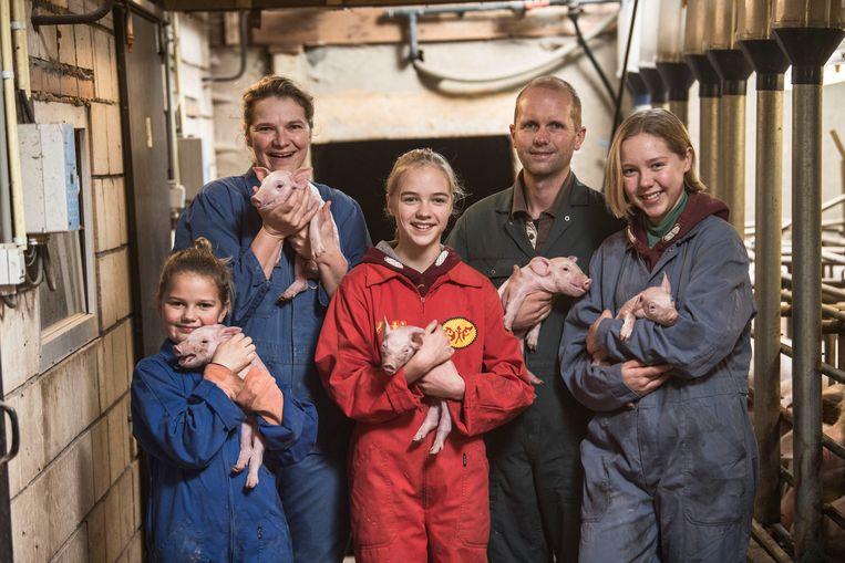 Boerenjaar (programma op Vier)