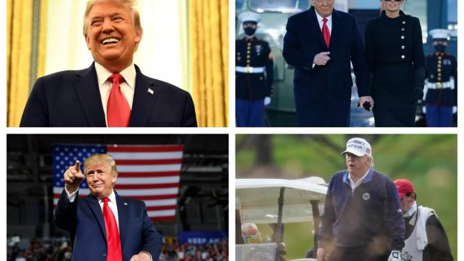 QUIZ. Trump is 75