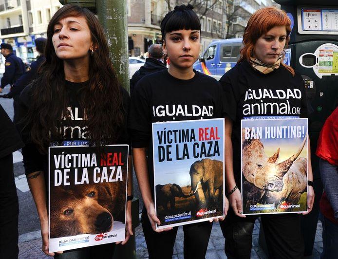 Demonstranten protesteren tegen de olifantenjacht van de Spaanse koning.