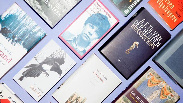 A.F.Th. van der Heijden schreef met Kwaadschiks het beste boek van 2016, aldus de Volkskrant. Beeld Marie Wanders