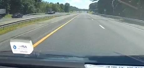 Un automobiliste surpris par la chute d'un arbre