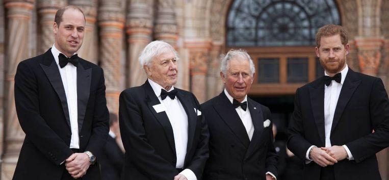 Gaat het nog goedkomen tussen prins William en Harry?