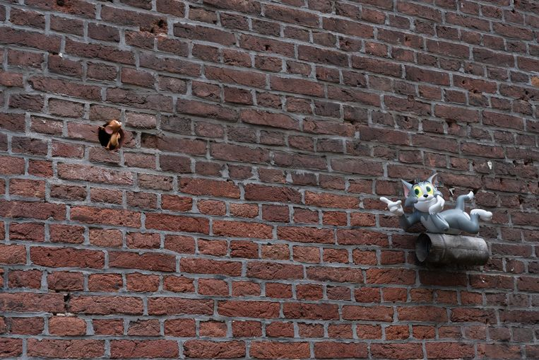 Koggestraat Beeld Streetart Frankey