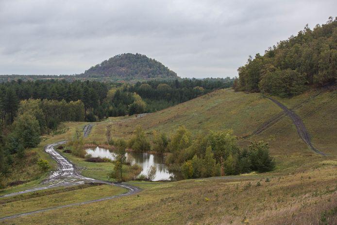 Het Nationaal Park Hoge Kempen is het enige nationale park in ons land. Maar dat moet veranderen.