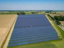 Sint Anthonis krijgt 30 hectare aan zonneakkers voor duurzame stroom
