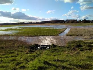 Jaagpad langs Durmedijk Klein Broek verdwijnt volgend jaar door overstromingsgebied
