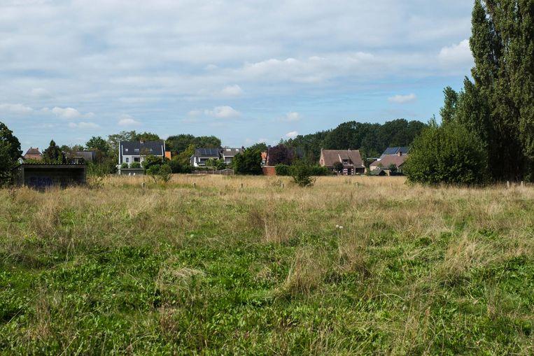 Komen er huizen of niet op het groene overstromingsgebied Zevenhuizen? Die vraag verdeelt nu al even de Lintse gemeenteraad.